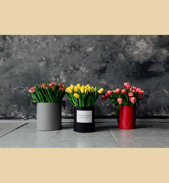 Набор из 3 коробок с тюльпанами