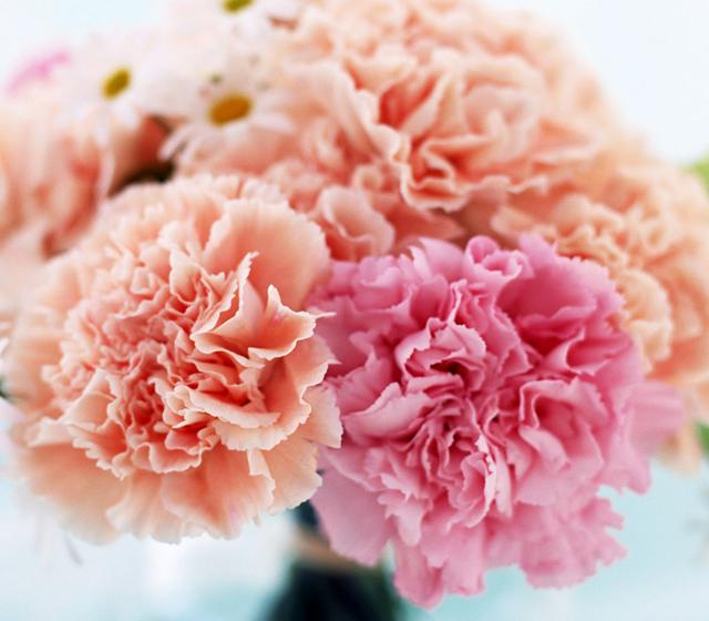 Цветы и композиции